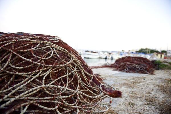 Il porto di Torre Vado, natura, cultura, territorio e tradizioni del Salento. A 2 passi dal Nilosira B&B